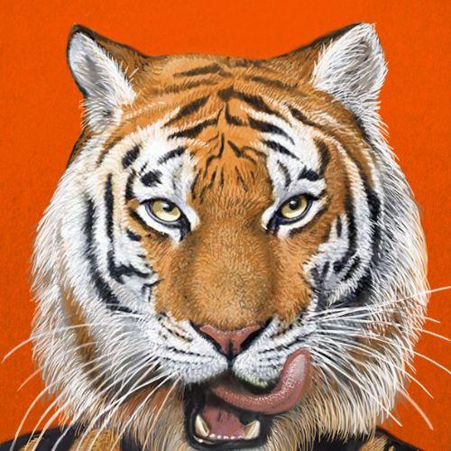 Portrait illustration of tiger