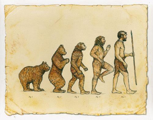 Editorial illustration of Human Evolution
