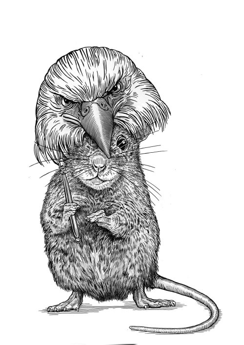 Animal Rat & Eagle black and white illustration