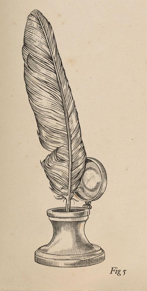 Quill line illustration