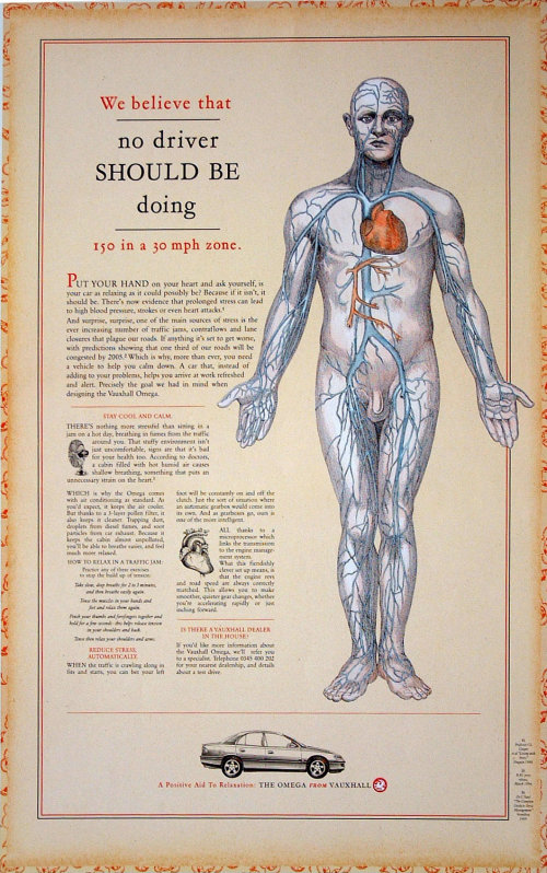 Heart physiology medical illustration
