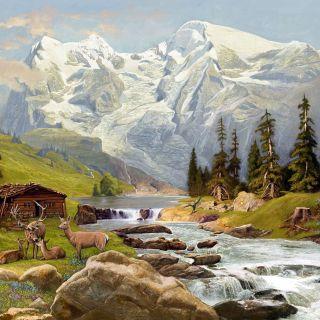 Bob Venables Nature