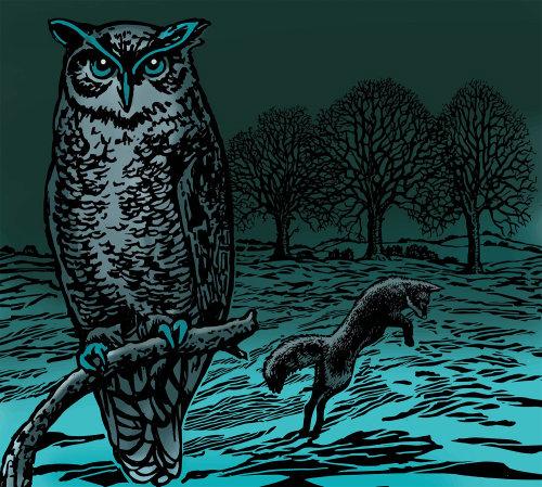 Animal Owl painting