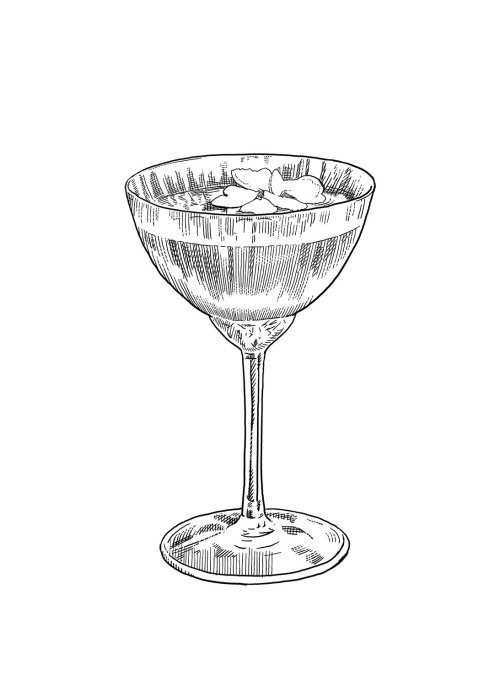 Hand drawn champagne glass sketch