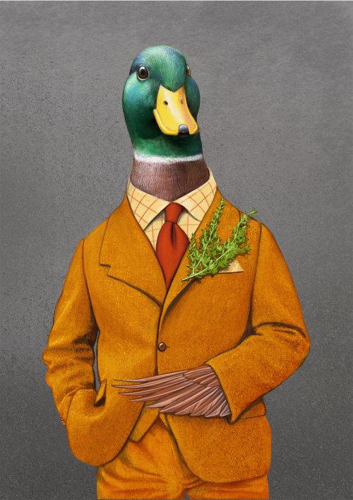 Anthropomorphic Duck bird illustration