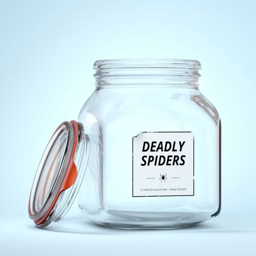 3d empty bottle deadly spiders