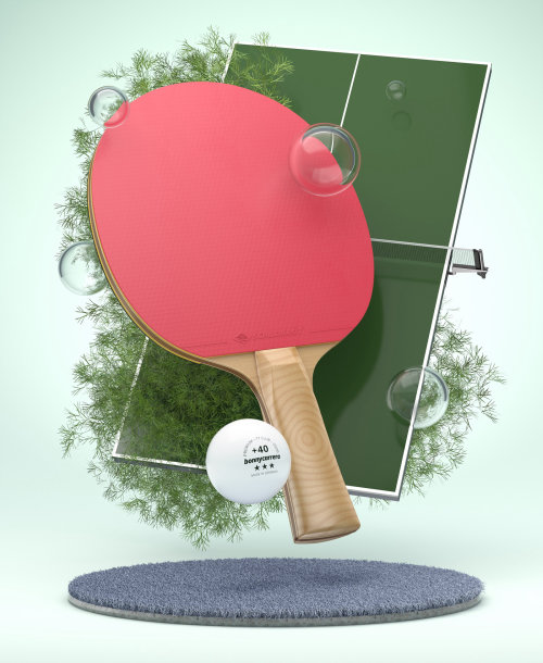 3d table tennis board and bat