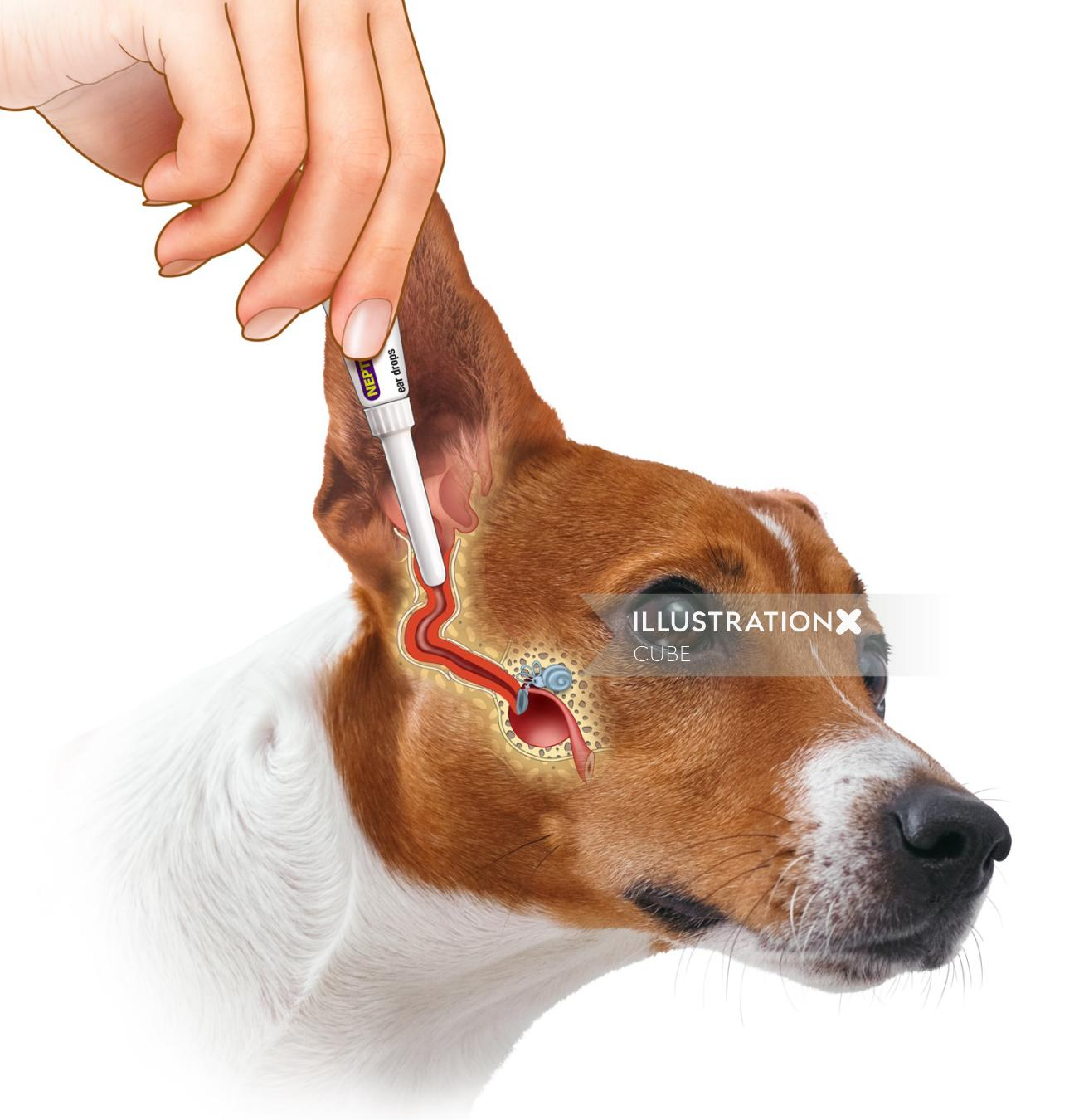 Dog went for medical treatment graphical illustration