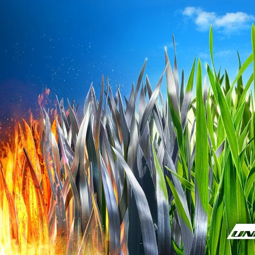 nature and fire graphical art