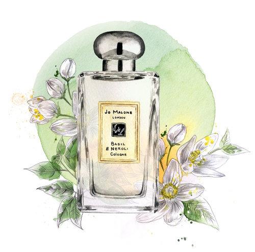 Ilustración de empaquetado del producto Jo Malan London