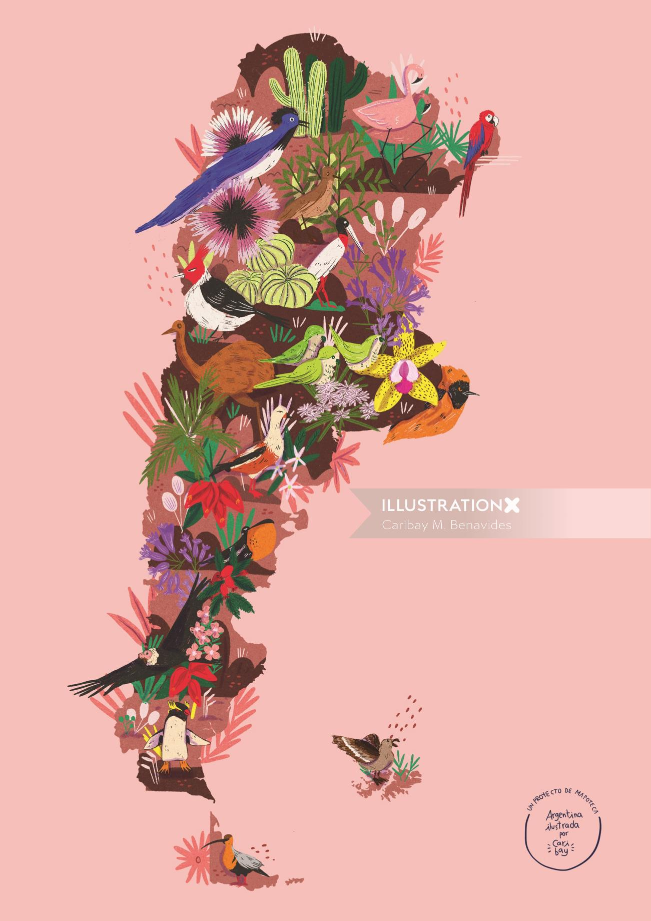 Map illustration of Birds and plants of Argentina for Mapoteca