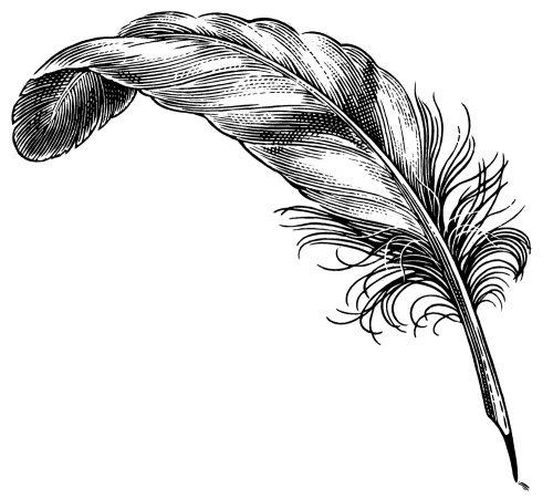 Feather quill line illustration