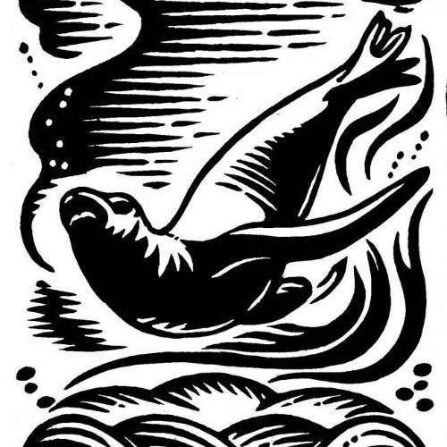 Seal under water black and white illustration