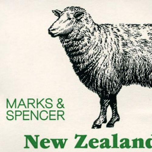 marks and spensor sheep