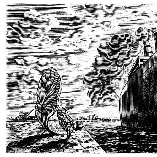 Black & White Sailing ship