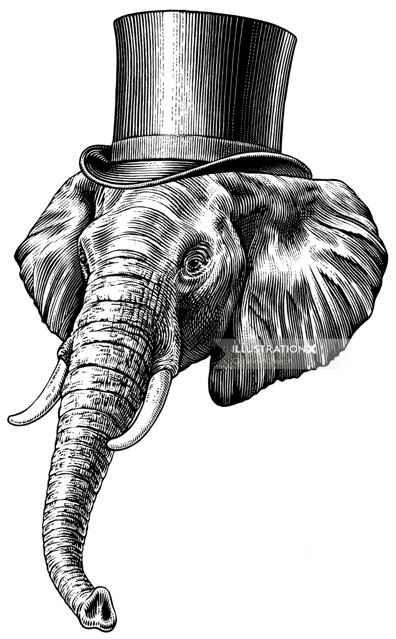 Elephant black and white illustration