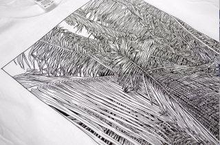 Black & White line art of Palm tree leaves