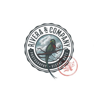 Logo design for a Rivera and company