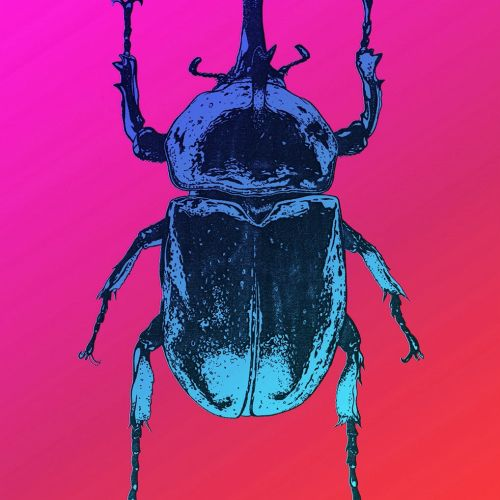 Animal art of bug
