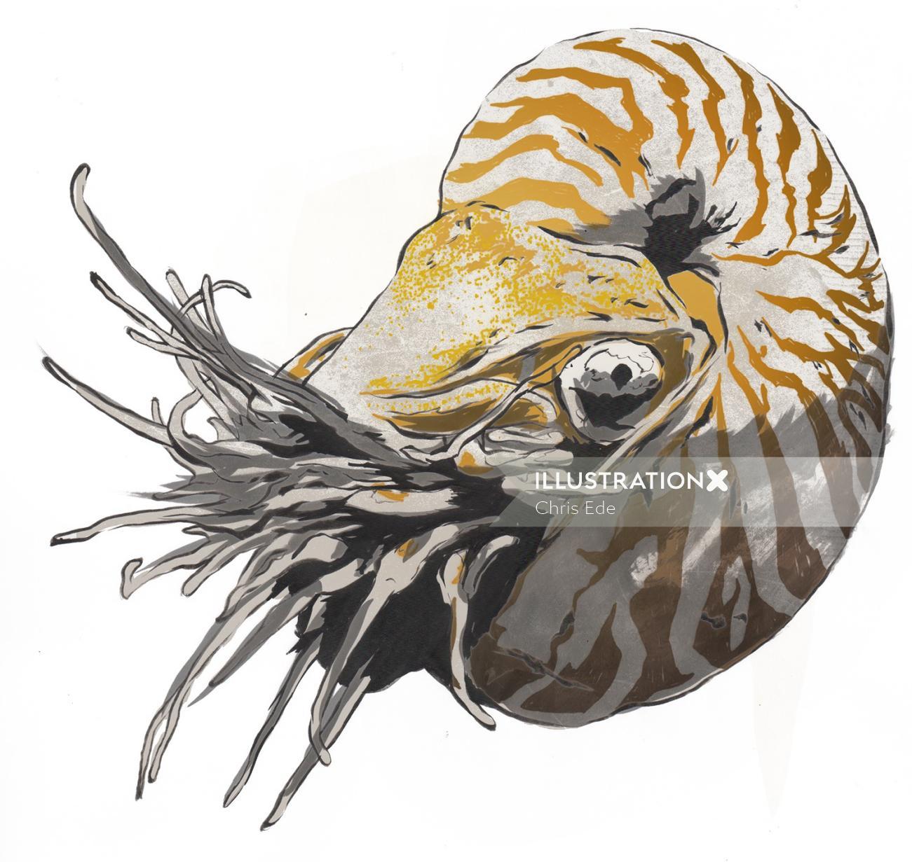 Illustration of sea animal