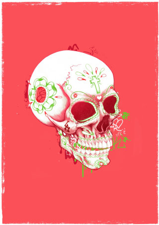 Skull illustration by Chris Ede