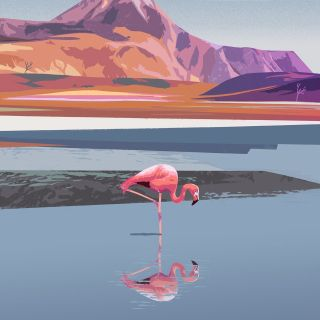 flamingo in Atacama Desert artwork