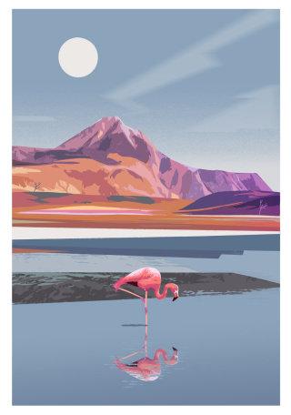 flamingo in Atacama Desert artwork