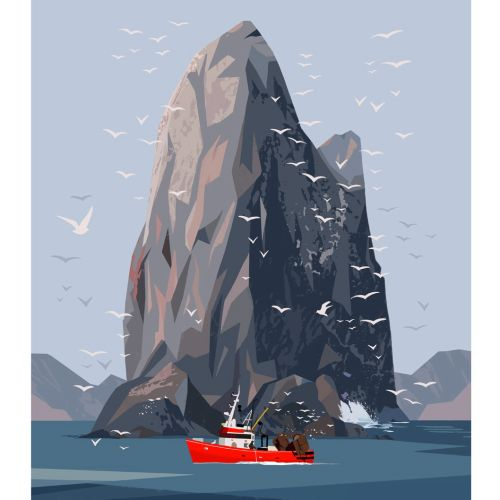 nature illustration of kittiwake rock
