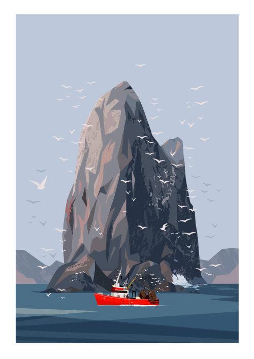 nature illustration of kittiwake rock