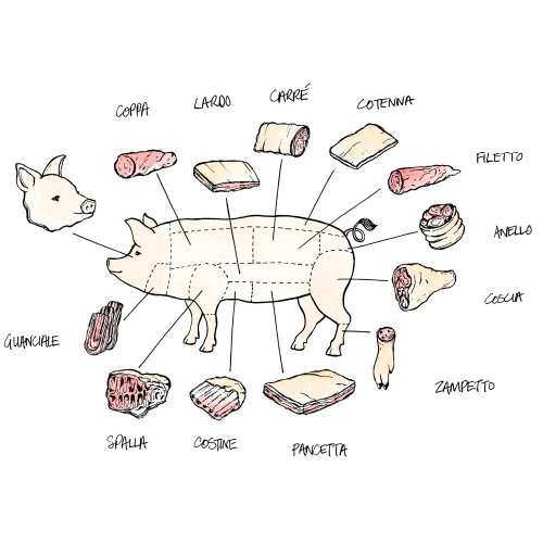 Conceptual art of pig body parts explain