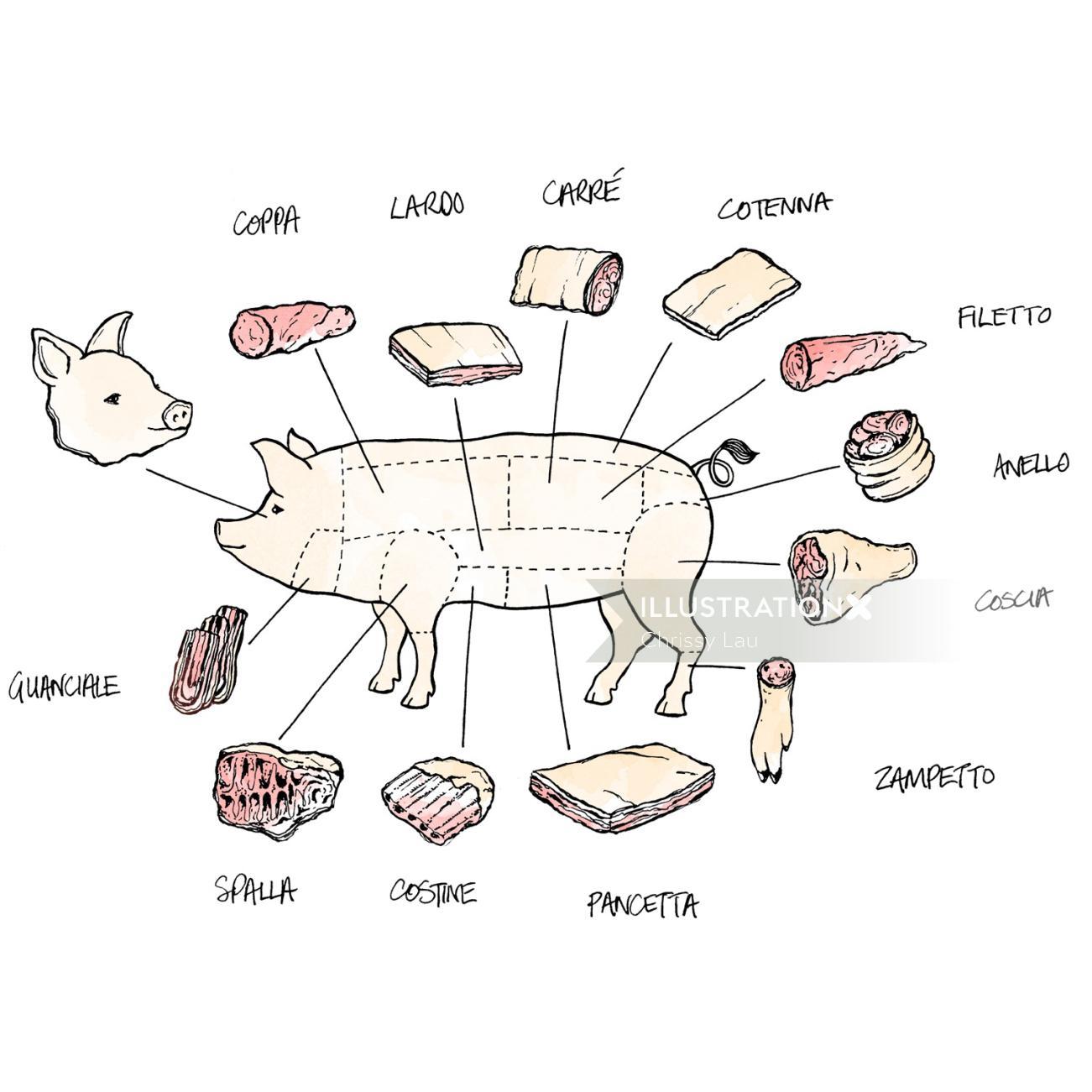 Conceptual art of pig body parts explain