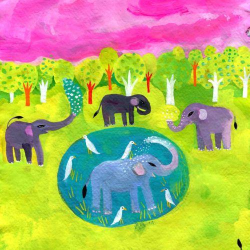 Animals elephant forest
