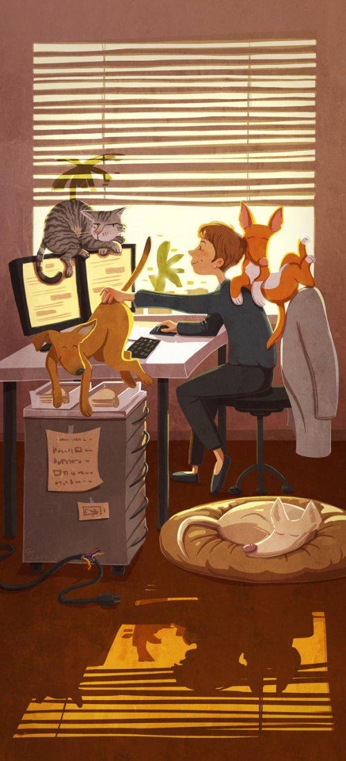 children illustration animals and boy with computer