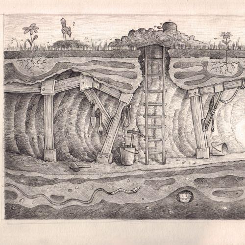 Black & White beaver digging underground