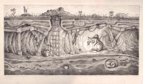 Castor noir et blanc creusant sous terre
