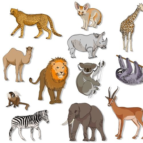 Set of animals illustration