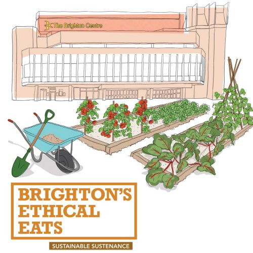 brighton, food guide,