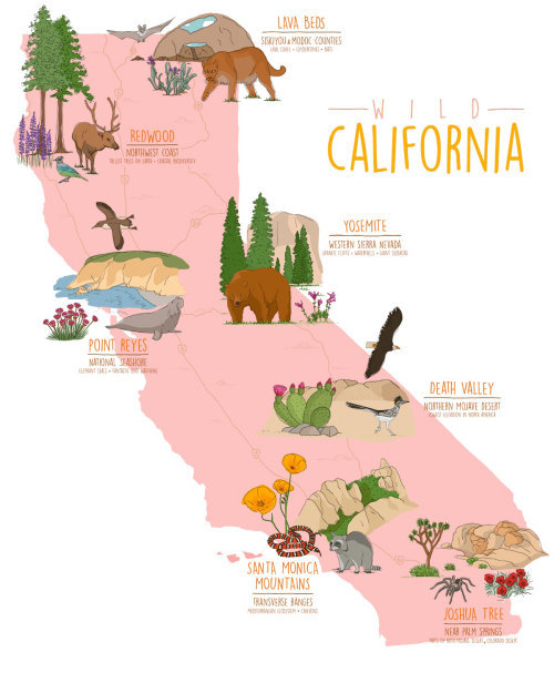 Ilustração do mapa dos parques nacionais dos EUA