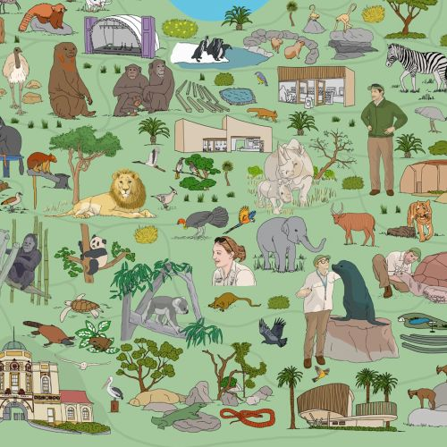 Map illustration of Taronga Zoo, Sydney