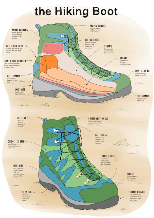 Line and color of Hiking Boots anatomy