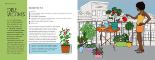 Editorial illustration For Edible Balconies