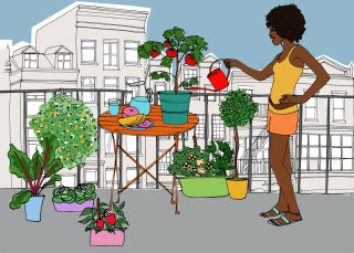 Illustration of Girl watering plants