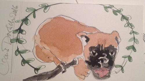 Loose Animal dog illustration