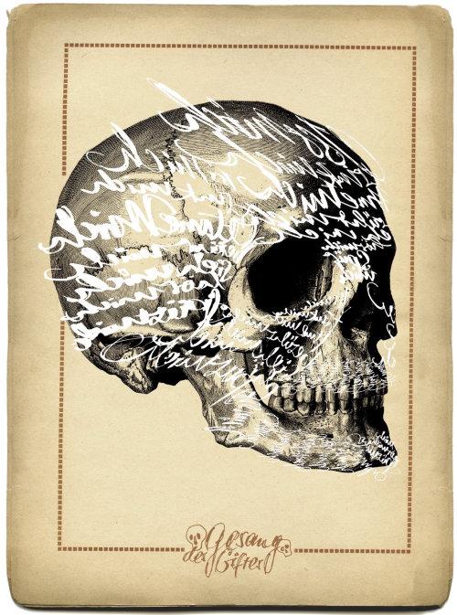 Historical lettering on skull