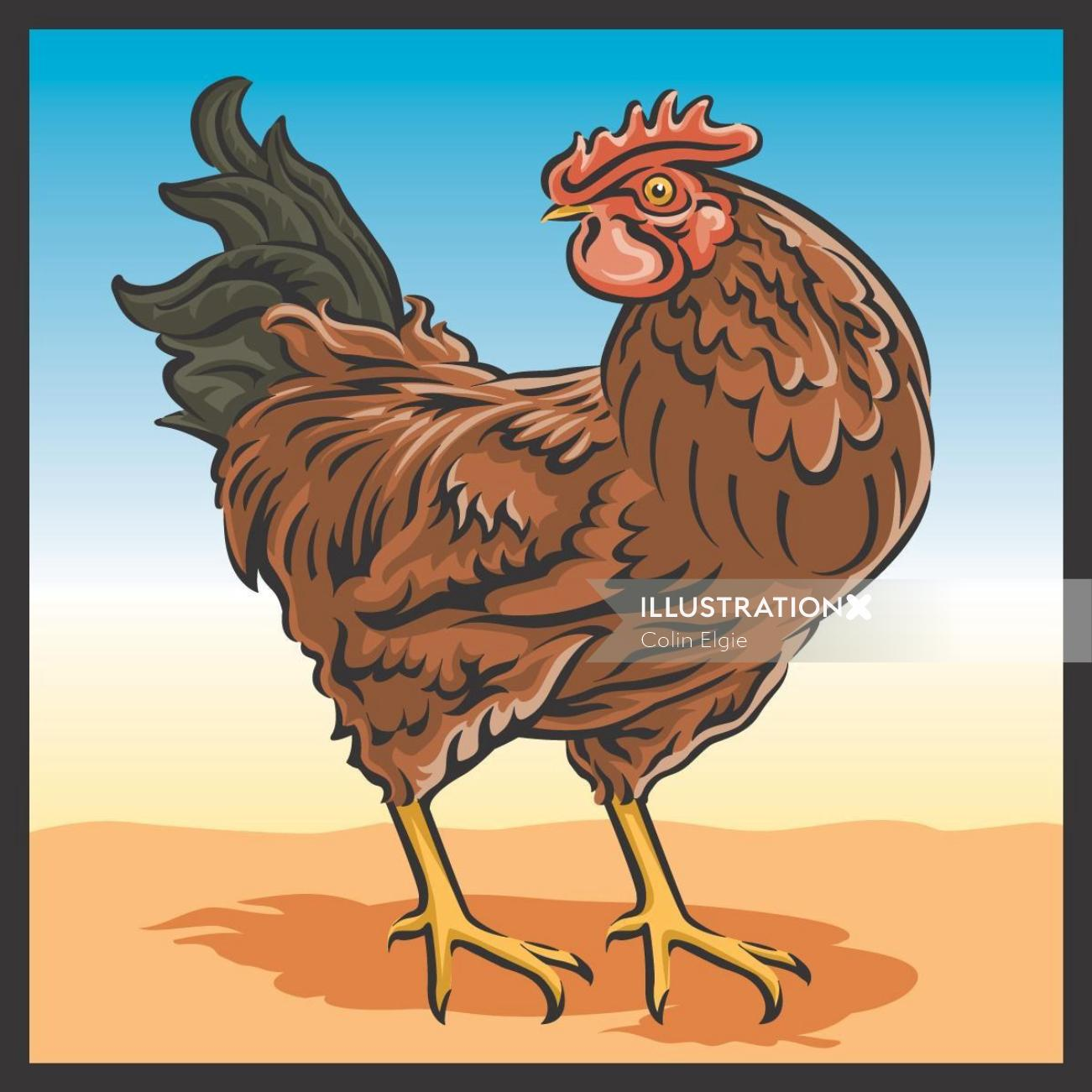 Hen illustration | Animal style gallery