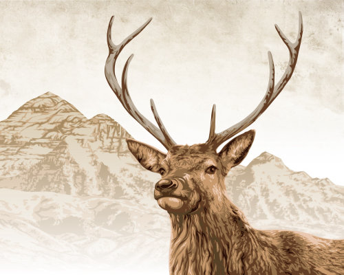 Stag illustration | Animal style gallery