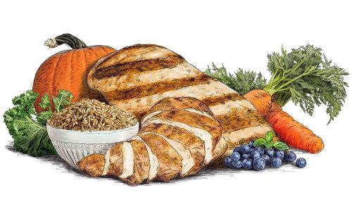 Dibujo de alimentos e ingredientes