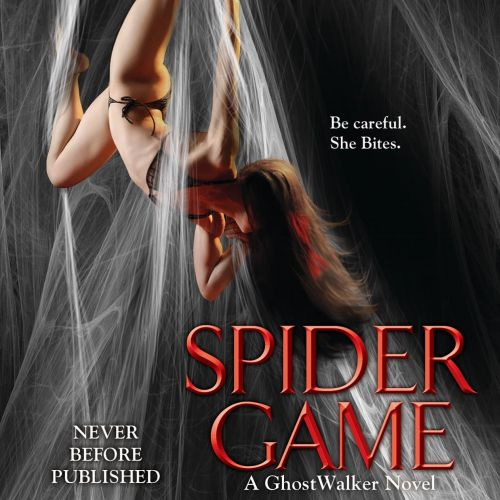 Spider game book cover illustration