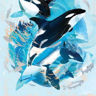 Artwork promoting whale conservation for Seattle Aquarium