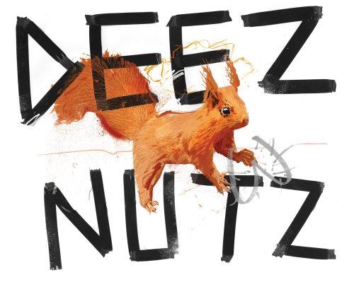 noix, écureuil, argot, calomnie de rue, lettrage, type, message audacieux, drôle, humour, satire, britannique w